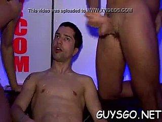Gay groep blowjobs