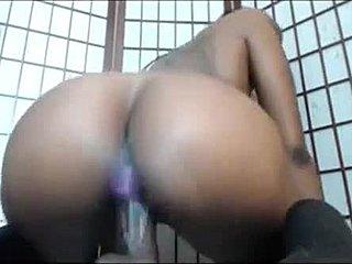 Ebony shemale porn.com